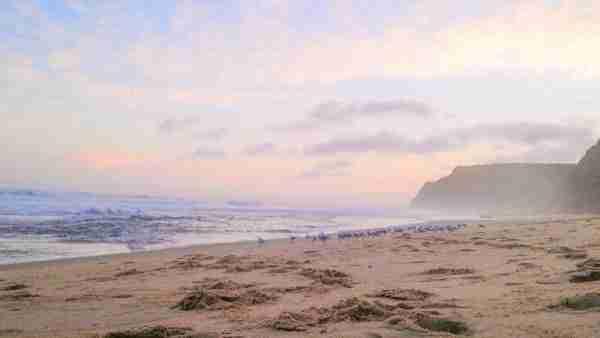 Little Garie Beach Royal National Park Sunset Haze