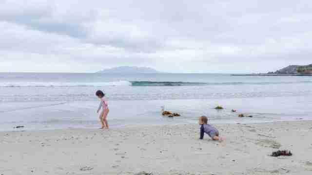 Anchor Bay Beach Tawharanui Regional Park White Sandy Beach